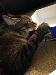 Gilligan laying on a kid's puzzle box top