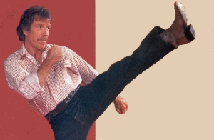 chuck norris roundhouse kick